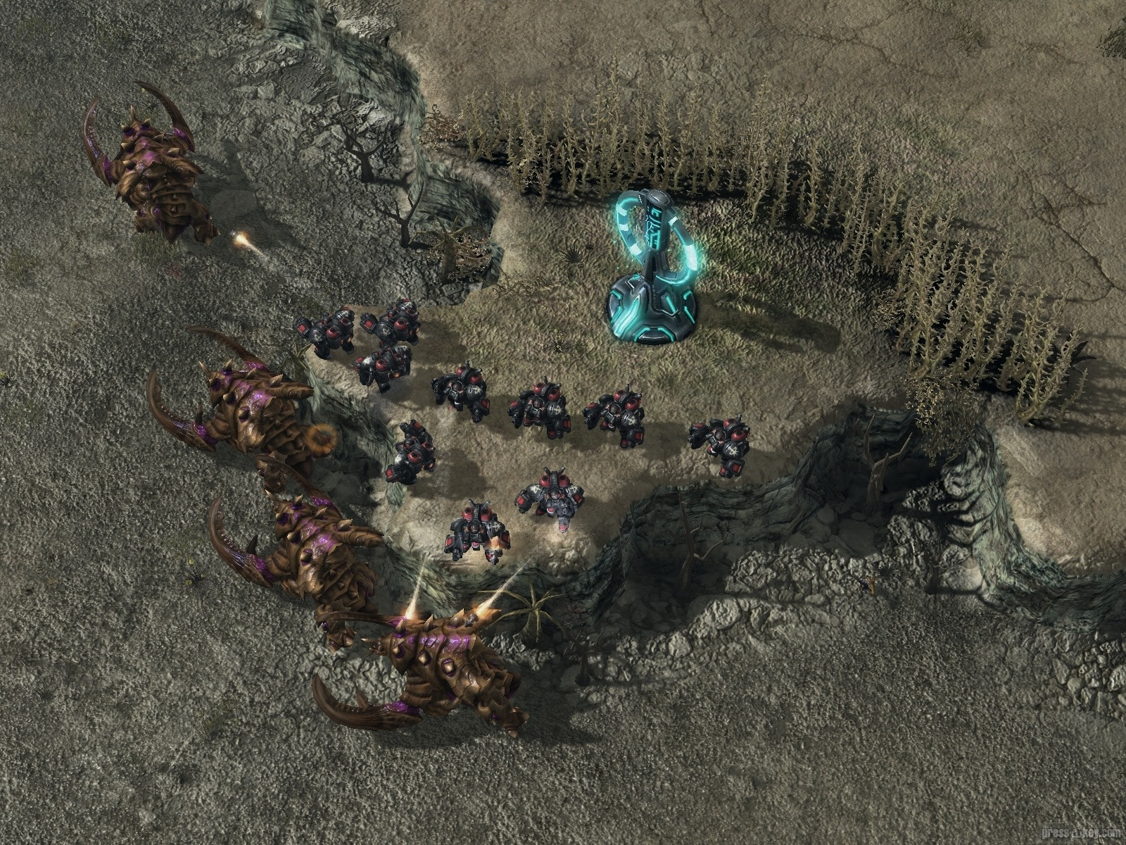 The Starcraft 2 Marauder is the crunching anti-armor unit in the
